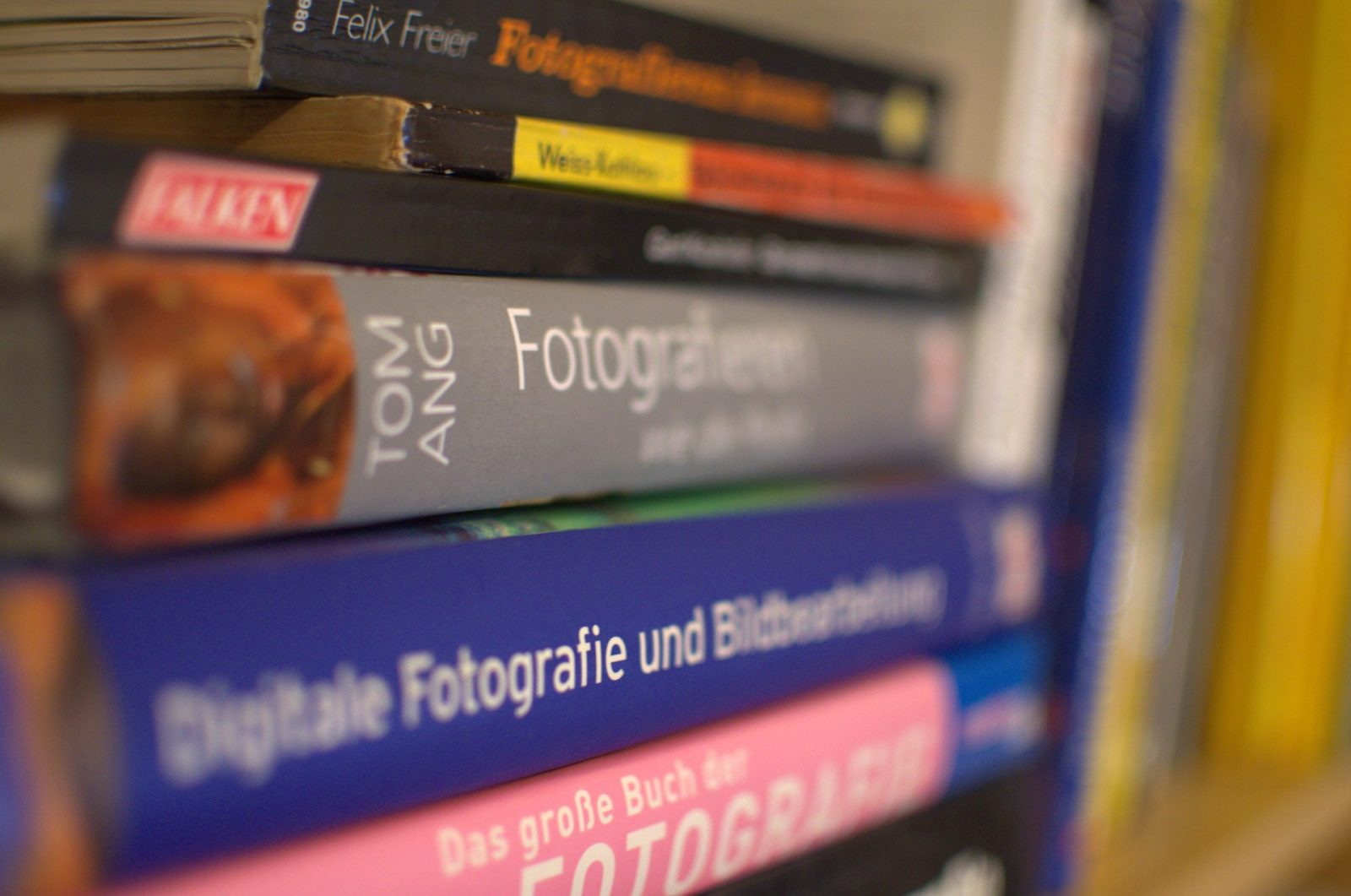 Bücher für Fotografen: Tom Ang – Fotografieren das ganze Jahr
